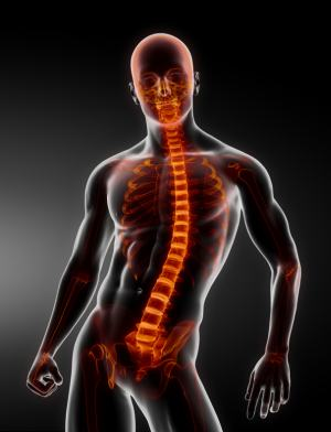 An Inside Look at Body Imaging